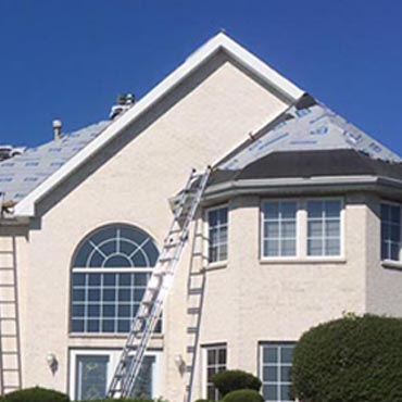 Shingle Roof - 1 small.jpg