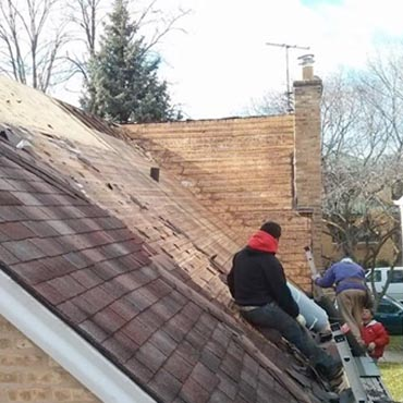 Chicago Shingle Residential Roofing